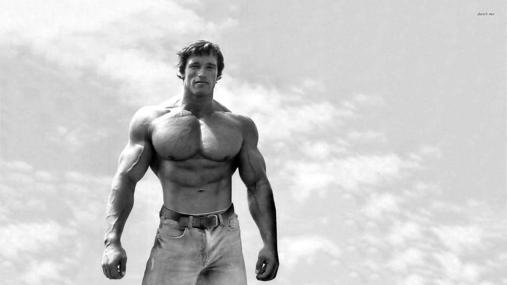 Arnold flexible career capital